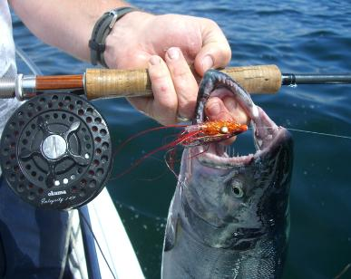 Salt Water Tube Flies for Pacific Salmon